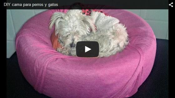C mo hacer una cama para perros y gatos - Como hacer una cama para perro ...
